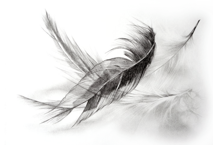 down-feather-filling-for-pillows