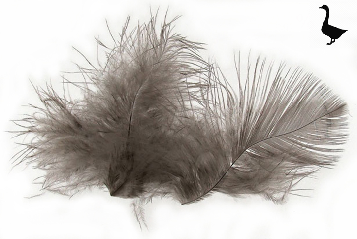 grey-goose-feathers-used